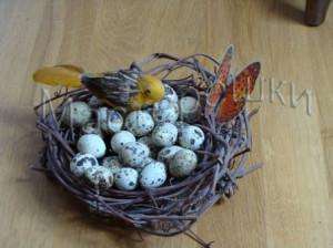 Готовое гнездо копия