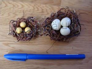 Маленькие гнезда копия